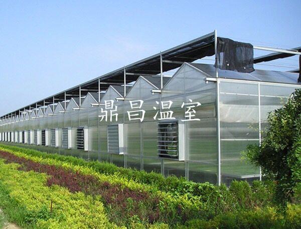 阳光板智能温室2