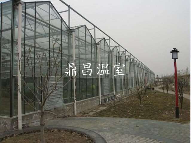 12米跨度玻璃温室