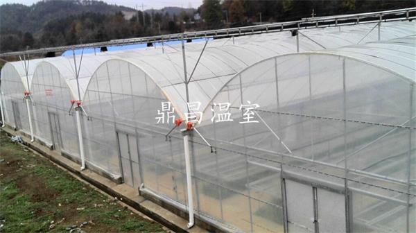 外遮阳薄膜温室