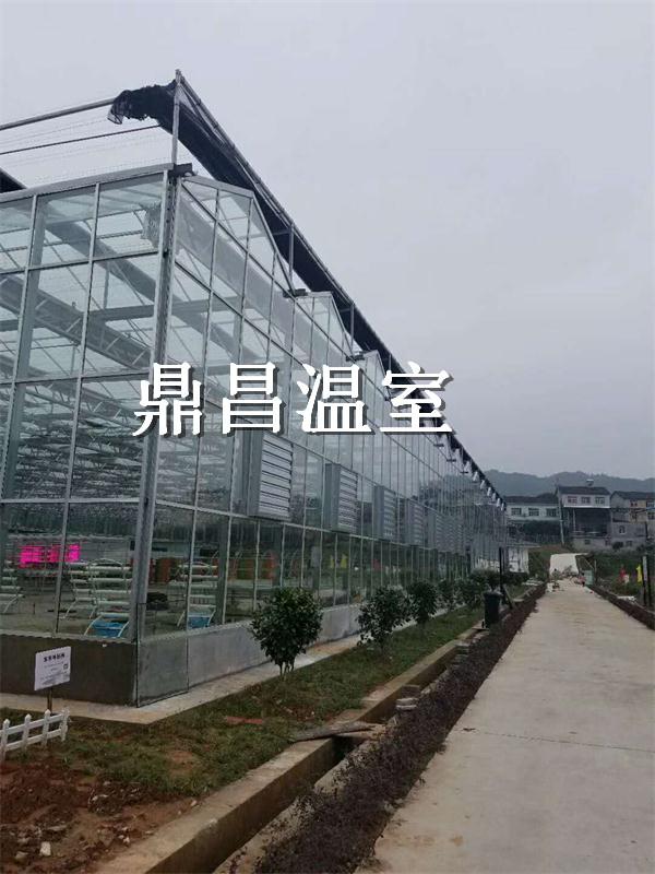 农科院玻璃温室