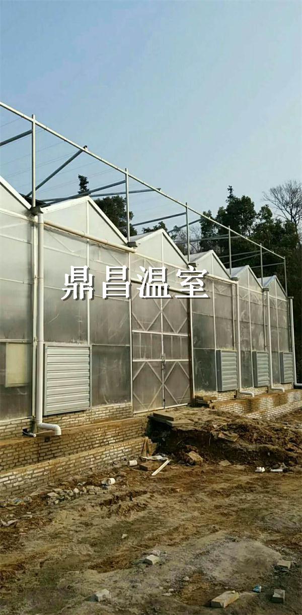 襄阳阳光板温室
