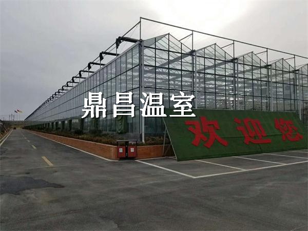 枝江花海玻璃温室