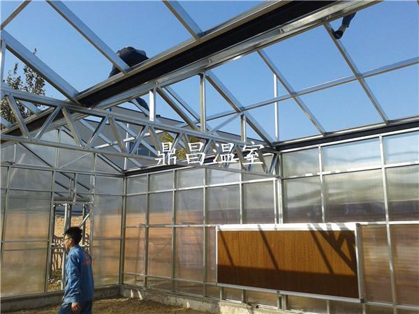 阳光板温室大棚建设